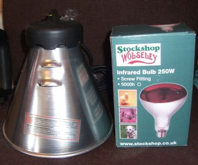 Heat lamp holder & bulb